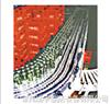 模块式塑钢网带输送机